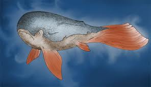 La Baleine par Aigle Bleu dans BALEINE images-1