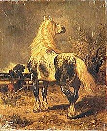 Le cheval, animal Totem dans CHEVAL 220px-achille_giroux_percheron_dans_un_pturage