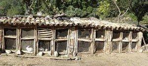 Installations d'élevage du Lapin dans LAPIN - LIEVRE 024e-junyent-conilleres-300x135