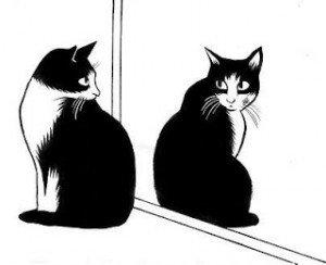 La personnalité du chat dans CHAT chat-300x244