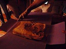 Imaginons la Fourmi dans FOURMI 220px-chinguetti-manuscrit-termites
