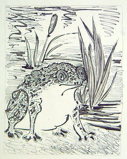 Les animaux et leurs messages grenouille for Crapaud dans la maison