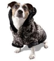 Contre le froid pour mon chien dans CHIEN chienchaud