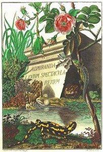 La Salamandre et l'homme dans LEZARD rosel_v_rosenhof_bild-203x300