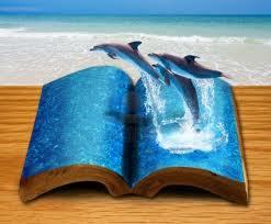 L'homme, lointain cousin du dauphin dans DAUPHIN mer