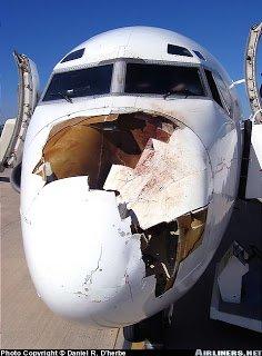 Symbolisme de la Cigogne dans CIGOGNE avion-cigogne