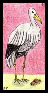 la cigogne de l'Oracle Gé dans CIGOGNE images-15-156x300