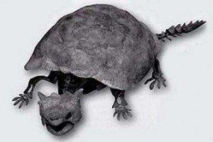 tortue-prehistorique-4