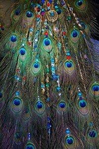 320px-Peacock_Jewelery_(6481364025)