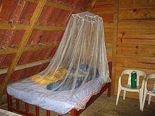 220px-Mosquito_Netting