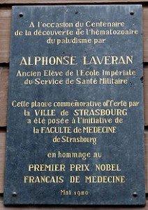 220px-Plaque_Alphonse_Laveran_à_Strasbourg