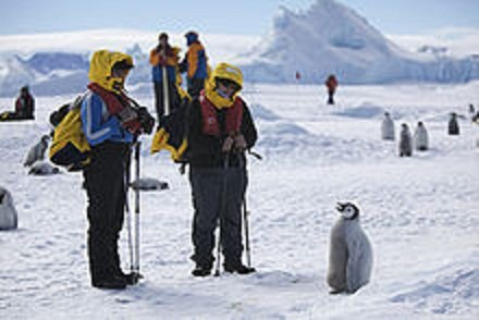 220px-Aptenodytes_forsteri_-Snow_Hill_Island,_Antarctica_-juvenile_with_people-8