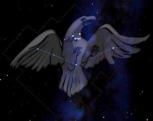 constellation_aigle