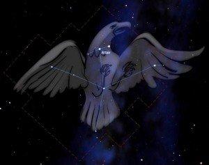 constellation_aigle