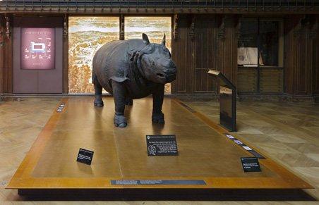 rhino-lxiv-new_4000_452