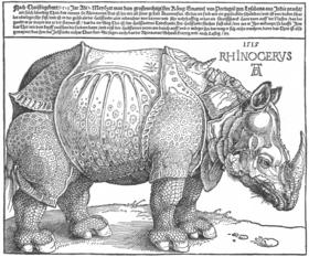 280px-Dürer_rhino