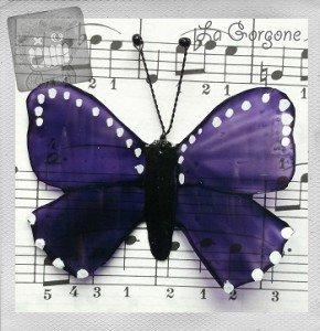papillon-violet