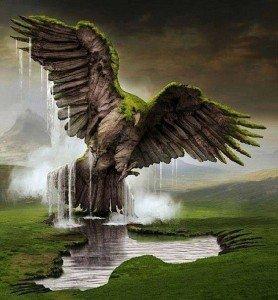 1 aigle