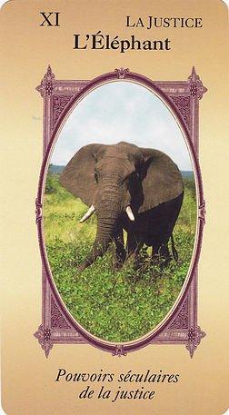 SAGESSE de l'éléphant
