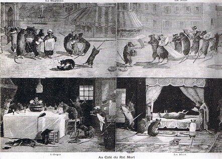 Café des rats